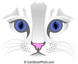 zamknięcie, kot, do góry, twarz