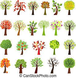 zbiór, drzewa