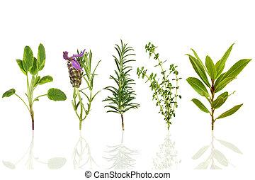ziele, liść, wybór