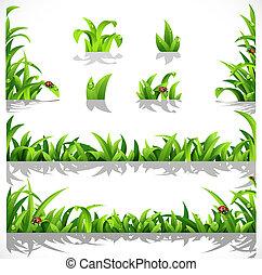 zielona trawa, soczysty, rosa