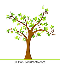 zielone drzewo