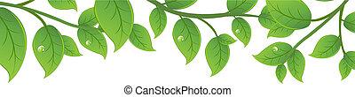 zielony, gałęzie
