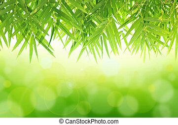 zielony, kasownik, tło