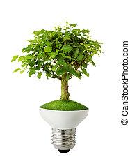 zielony, pojęcie, energia