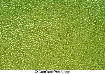 zielony, skóra