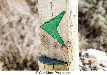 zielony, strzała