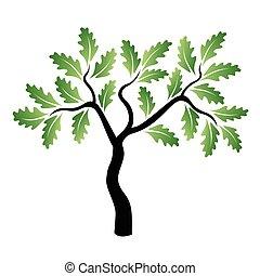 zielony, wektor, dąb, młody, drzewo