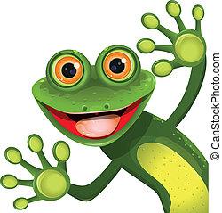 zielony, wesoły, żaba