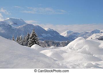 zima, śnieg, drzewa, austriak, pokryty, krajobraz