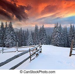 zima, barwny, dramatyczny, krajobraz, góry., wschód słońca