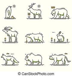 zima, komplet, zwierzęta, szkic, rysunek