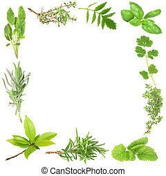 zioła, organiczny