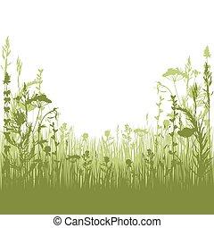 ziołowy, sylwetka, tło