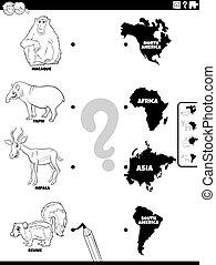 zwierzę, kontynenty, mecz, gatunek, kolor, strona, książka