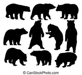 zwierzę, niedźwiedź, sylwetka, dziki