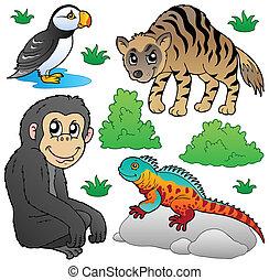 zwierzęta 2, komplet, ogród zoologiczny