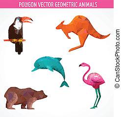 zwierzęta, barwny, zbiór, wektor, polygonal