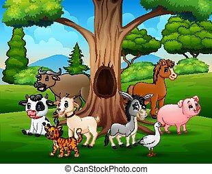 zwierzęta, krajobraz, drzewo uprawiają, pod, wydrążenie, grupa