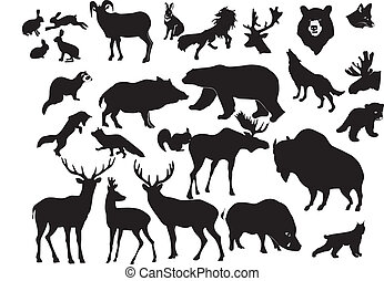 zwierzęta, las, zbiór