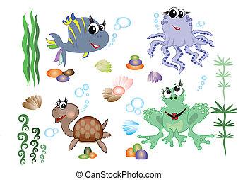zwierzęta, morze